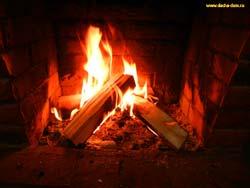 топливные брикеты