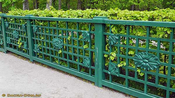 Как сделать зелёный забор 190