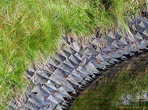 водоотводная канава